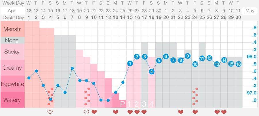 Método sintotermal de percepção da fertilidade: uma forma de observar, registrar e interpretar os sinais de fertilidade do corpo para saber os períodos fértil e infértil do ciclo menstrual.